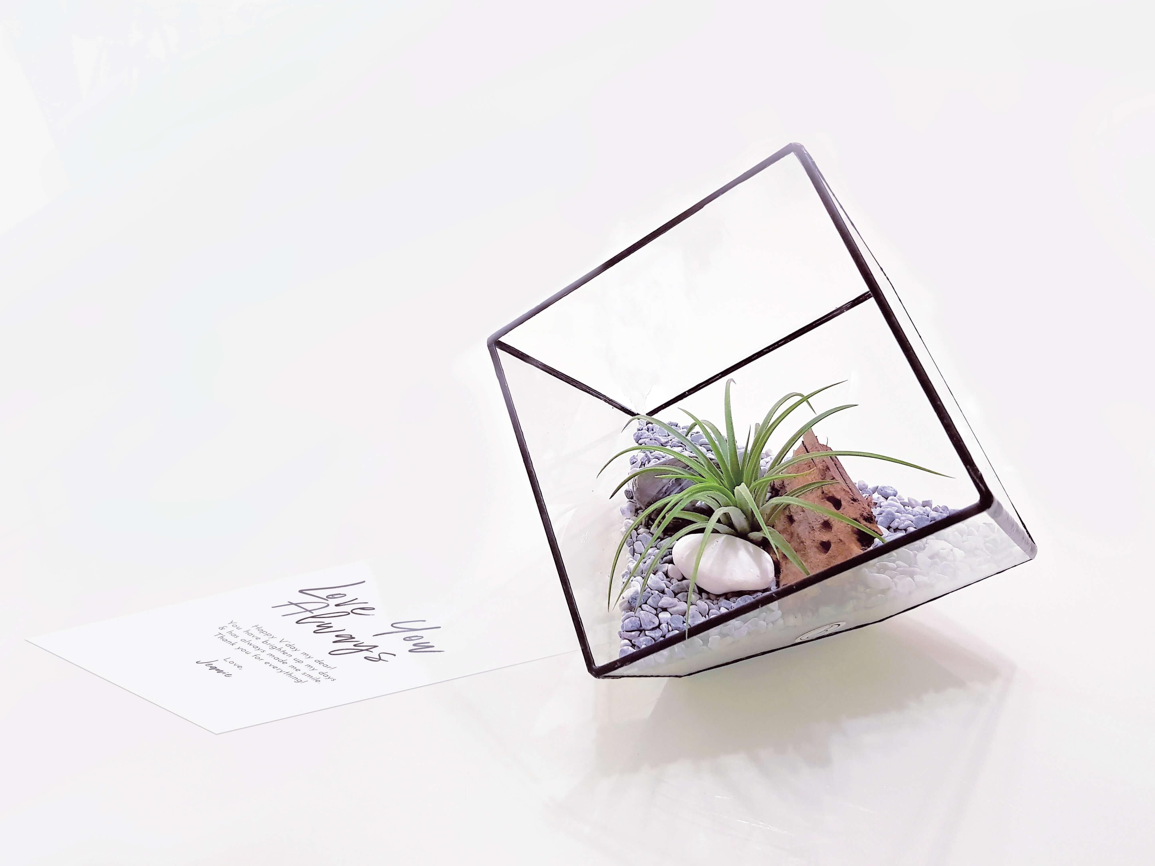 Cube Small (Air)